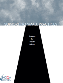 Supporting Small Practices.PNG